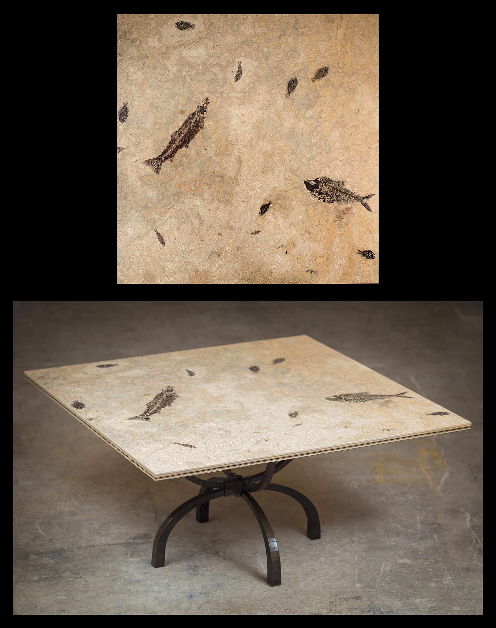 Fish Fossil Table