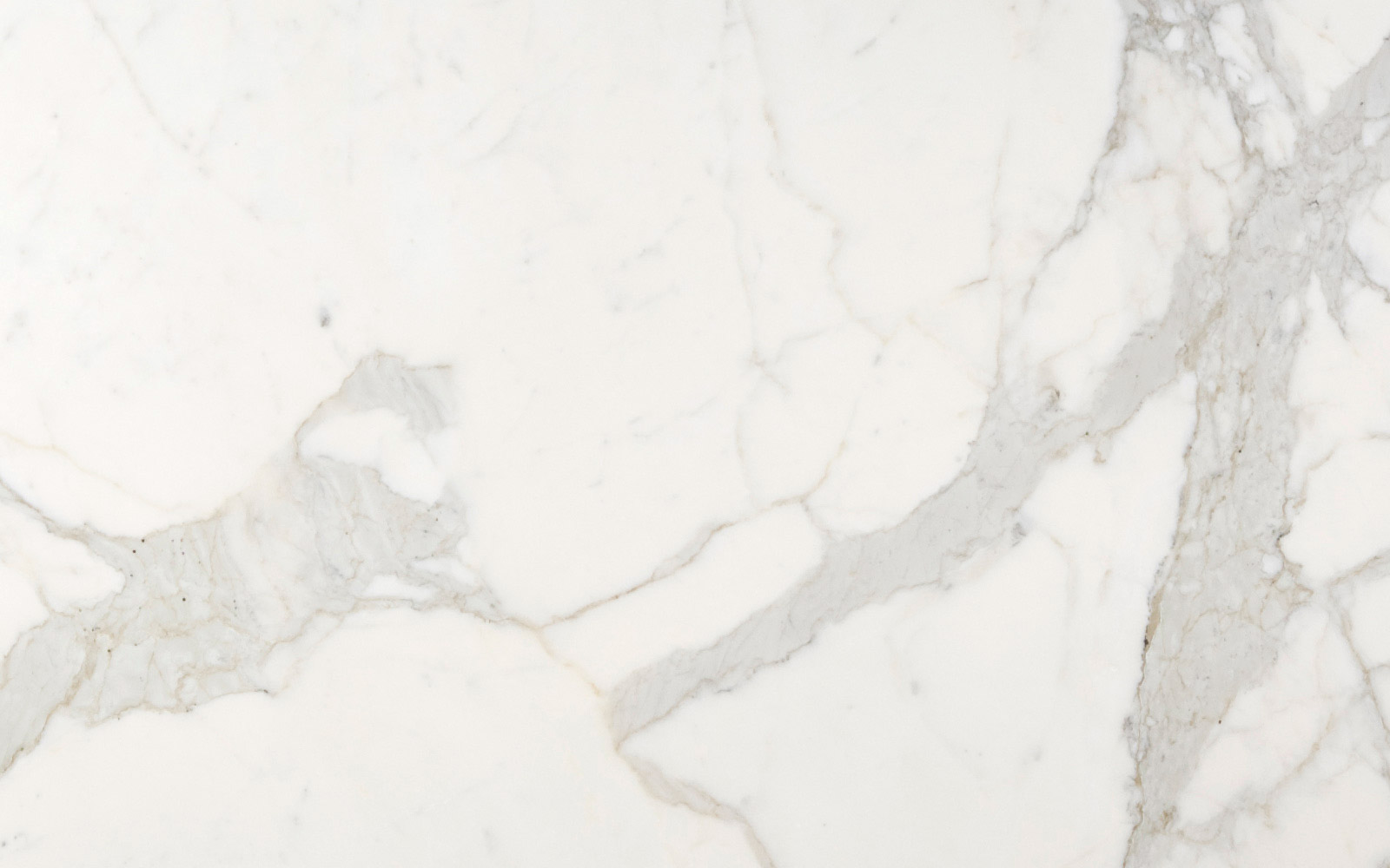 Calacatta Oro Marble Trend Marble Granite Tiles