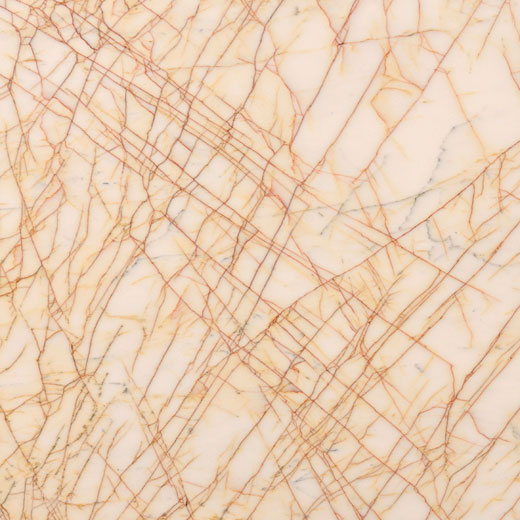 Golden Spider Marble Trend Marble Granite Tiles